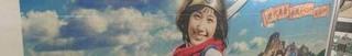 6月7日(火)のつぶやき:本田翼 星のドラゴンクエスト.jpg