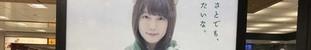 _04_as2017_1228_0504_IMG_6754東京.jpg