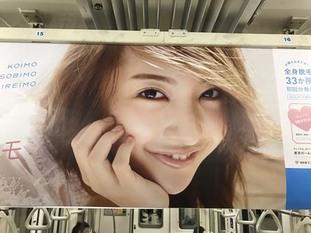as2017_0325_0500_IMG_2306電車丸ノ内線.jpg
