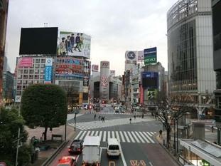 s2017_0224_0648_CIMG3271渋谷.jpg